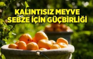 Tarım ve Orman Bakanlığı ile Ege Yaş Meyve Sebze...