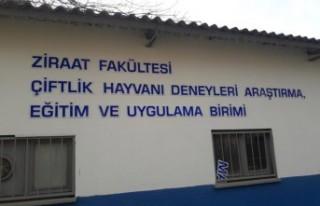 Türkiye'deki öncü yerel etik kurulları arasında