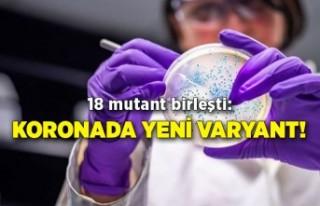 18 mutant birleşti: Koronada yeni varyant!