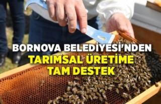 Bornova Belediyesi'nden tarımsal üretime tam...