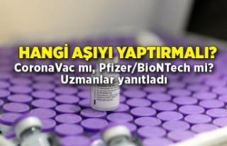Hangi aşıyı yaptırmalı: CoronaVac mı, Pfizer/BioNTech...