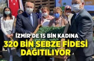 İzmir'de 15 bin kadına 320 bin sebze fidesi...