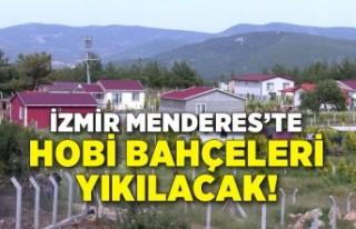 İzmir Menderes'te Hobi bahçelerine yapılan...