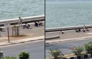 Maske takmayanlara 'ördek yürüyüşü' cezası