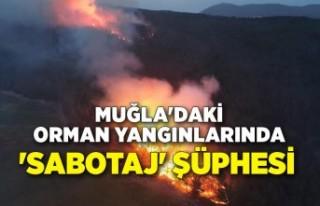 Muğla'daki orman yangınlarında 'sabotaj'...