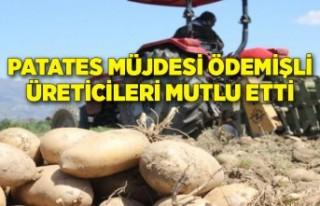 Patates müjdesi Ödemişli üreticileri mutlu etti