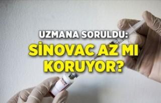 Uzmana soruldu: Sinovac az mı koruyor?