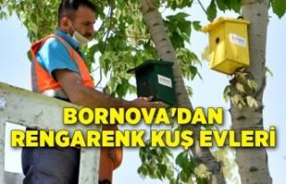 Bornova'dan rengarenk Kuş Evleri