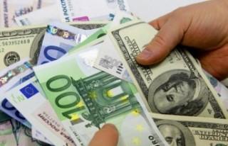 Dolar 8.33 lira, euro 10.01 lira
