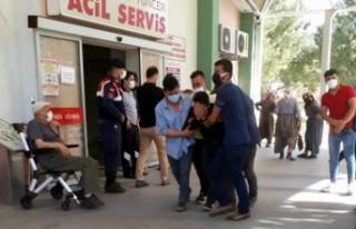 Gölete düşen 3 yaşındaki çocuk öldü