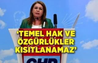 """Gülizar Biçer Karaca: """"Temel hak ve özgürlükler..."""