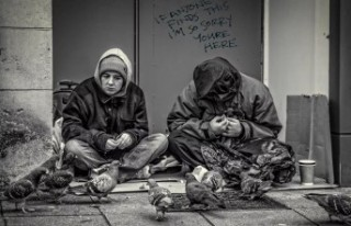 İsviçre'de 'evsizlerden kurtulma' planına...