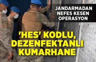 jandarmadan nefes kesen operasyon: 220 kişiye ceza