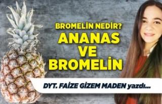Faize Gizem Maden yazdı: Ananas ve Bromelin