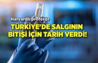 Harvardlı profesör Türkiye'de salgının bitişi...