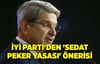 İYİ Parti'den 'Sedat Peker Yasası'...