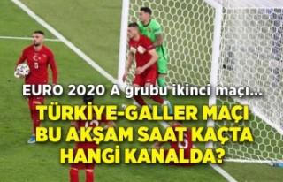 Türkiye-Galler maçı bu akşam saat kaçta hangi...
