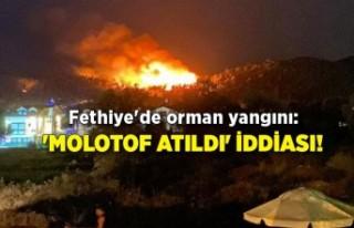 Fethiye'de orman yangını: 'Molotof atıldı'...