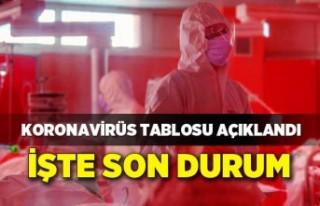 Koronavirüs Tablosu 24 Temmuz