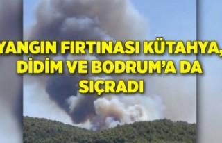 Yangın fırtınası Kütahya, Didim ve Bodrum'a...