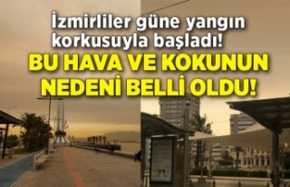 İzmirliler güne yangın korkusuyla başladı! İzmir'deki...