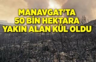 Manavgat'ta 50 bin hektara yakın alan kül oldu
