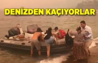 Milas'taki yangın Bodrum'a sıçradı! Denizden...