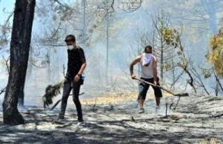 Uşak'ta 2 noktada orman yangını; 8 hektar...