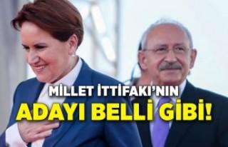 Akşener, Millet İttifakı'nın cumhurbaşkanı...