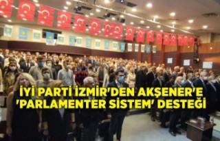 İYİ Parti İzmir'den Akşener'e 'parlamenter...