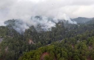 Manavgat'ta 4 hektar orman zarar gördü