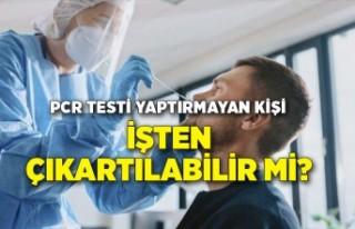 PCR testi yaptırmayan kişi, işten çıkartılabilir...