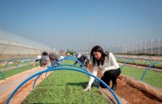15 Ekim Dünya Kadın Çiftçiler Günü için anlamlı...
