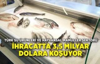 Su ürünleri ve hayvansal mamuller sektörü hedefine...
