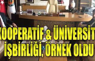 Kooperatif&üniversite işbirliği, örnek oldu