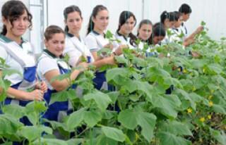 Expo İçin Antalya'ya Çiçek Lisesi