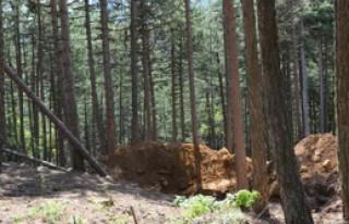 Ormanda Define Avı Adliyede Son Buldu