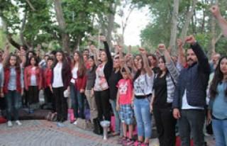 Temsili Gezi Parkı Açıldı