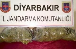 Diyarbakır'da 10 Kilogram Esrar Ele Geçirildi
