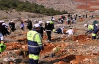 Gaziantep'te 2 Bin 350 Fidan Toprakla Buluştu