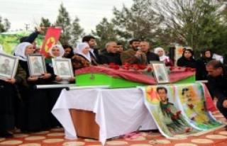 HDP'li Vekiller PKK'lı Cenazesine Katıldı