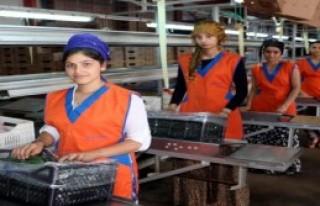 Rusya'ya Sebze Ve Meyve İhracatı Arttı