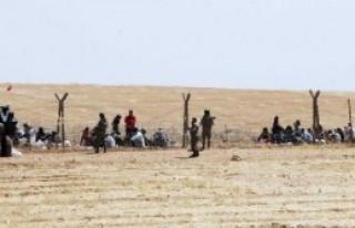 Suriye'den Gelişler Devam Ediyor