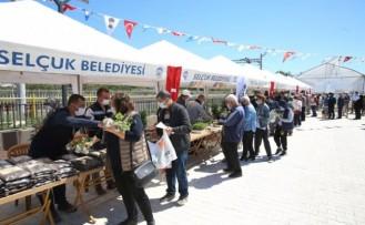 Efes Selçuk'ta yeşil atıklar doğal gübreye dönüşüyor