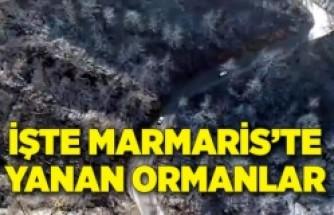 Marmaris'te yanan orman alanları havadan görüntülendi