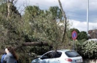 İzmir'de fırtına kabusu