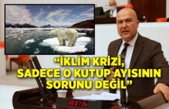 """""""İklim krizi, sadece o kutup ayısının sorunu değil"""""""