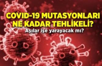 COVID-19 mutasyonları ne kadar tehlikeli, aşılar işe yarayacak mı?
