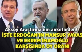 İşte Erdoğan'ın Mansur Yavaş ve Ekrem İmamoğlu karşısında oy oranı