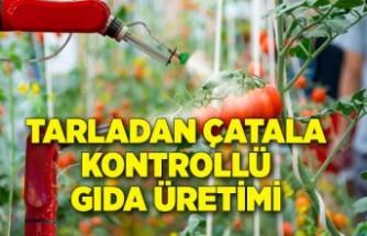 Tarladan çatala kadar kontrollü gıda üretimi